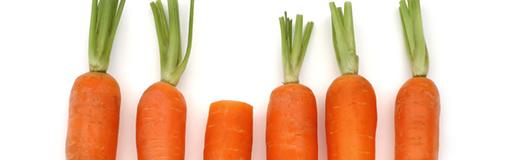 Fiche technique sur la carotte française