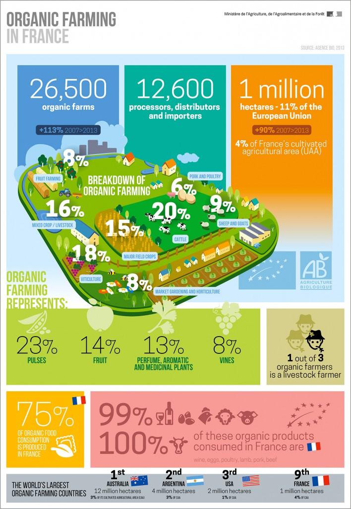 infography bio-organic