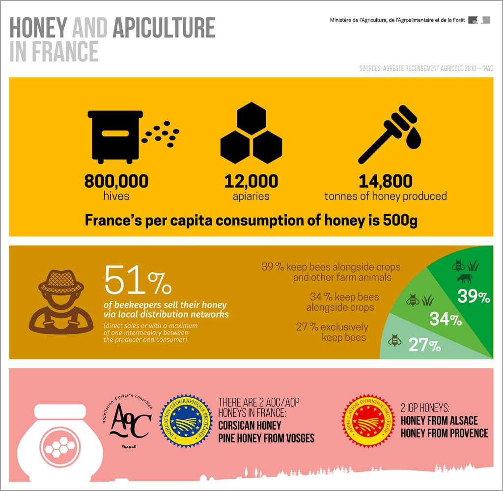 infography-honey-and-apiculture-in-france
