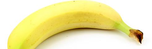 Fiche technique sur la banane