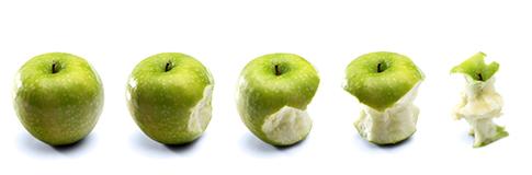 Fiche technique sur la Pomme française