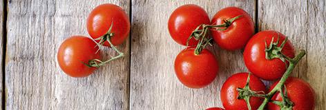 Fiche technique sur la tomate française