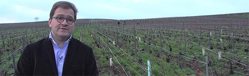 [Vidéo] La Maison de Champagne Charles Heidsieck : l'export comme ADN